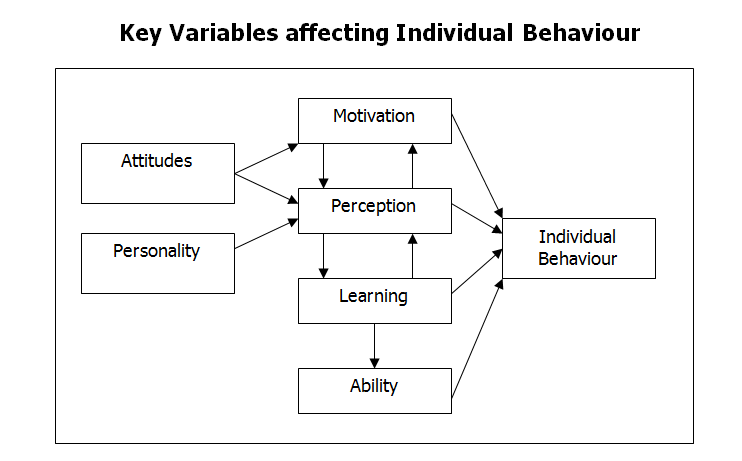 Key Variables affecting Individual Behaviour