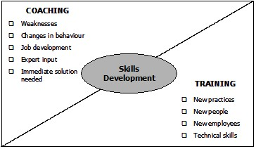 Skills Development through Coaching and Training